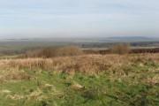 Bursdon Moor at Summerville Cross