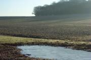 Farmland, Vernham Dean