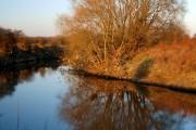 A quiet River Don