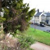Torquay Road, Oldway mansion gardens, Paignton