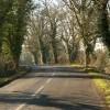Road at Dunsden Green