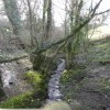 Stream at Docton