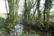 Stream east of Elmscott
