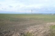 Open Farmland near Shuttlewood
