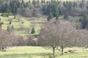 Grassland, Glen Shee