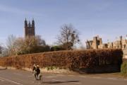 St. Mary's Church, Thornbury & The Castle