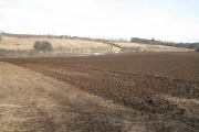Cultivated field, Ardblair