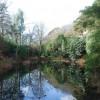 Llyn Tseineaidd Portmeirion Chinese Lake