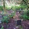 Mynwent y Cŵn Portmeirion Dogs' Cemetery