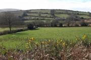Puddaven Farm
