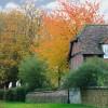 Autumn splendour in Waterstock