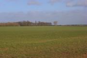 Farmland, Berinsfield