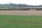 Farmland north of Frolesworth