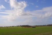 Farmland, South Weston