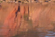 Reflections on the sand, Broadsands Beach