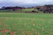 Farmland view north towards Killerton, Devon