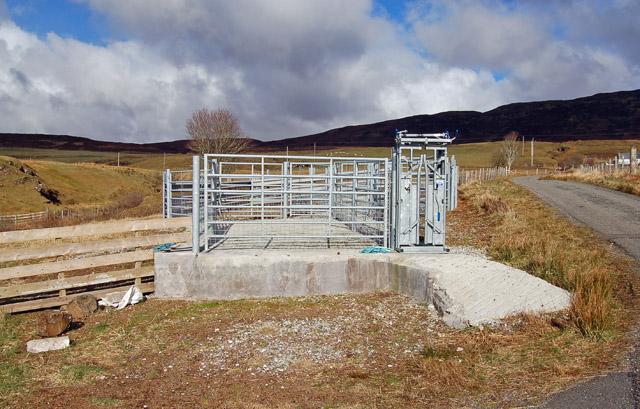 New sheepfold at Borve