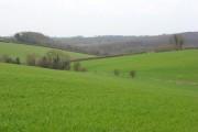 Farmland, Marlow