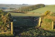 Towards Lambrenny