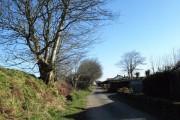 Lane through Tremail