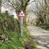 Lane to Trewen