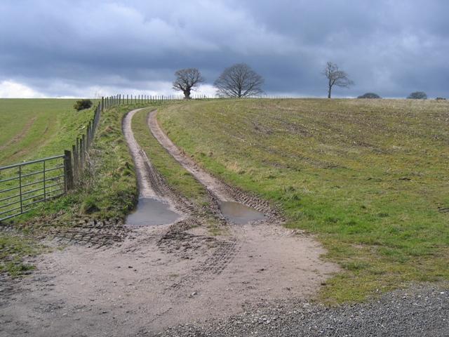 Farmland and track at Gwysaney