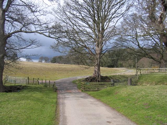 Farmland at Gwysaney
