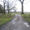 Cattle grid and track at Gwysaney