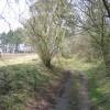 Hollow way at Gwysaney