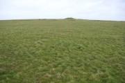 Near Condolden Barrow