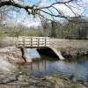 Bridge at Cannop Pond