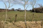 Field near Marshall Farm