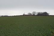 Farmland and Ancroft North Farm