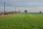 Farmland, Aston Rowant