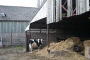 Hatton Manor Farm