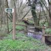 Bridleway to Cherridge and beyond