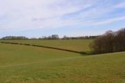 Pastures, Park Corner