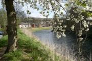 River Ebbw looking downriver