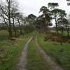 North end of path to Snape Rake Lane