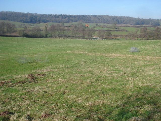 Grazing land at Hillhouse Farm