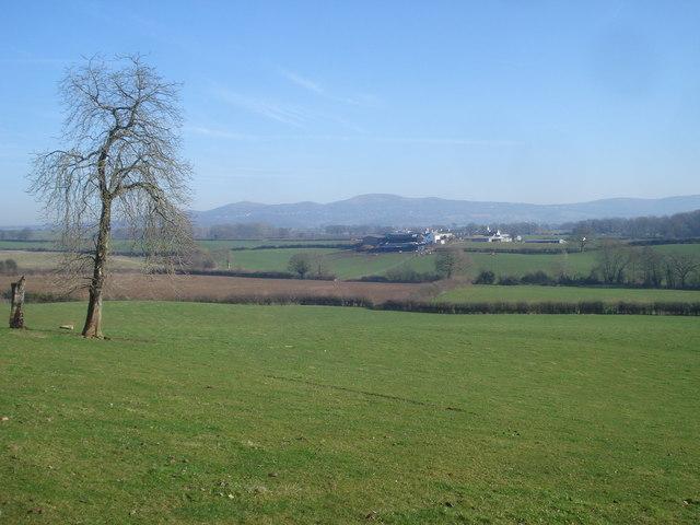 Farmland at Beacon Hill Farm