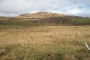 Farmland, Ardlussa