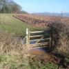 Wet gateway on the bridleway near Hill Farm