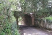 Bridge beneath a garden