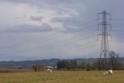 Pasture and pylon, Vernham Dean