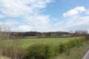 Near Brantingham Thorpe
