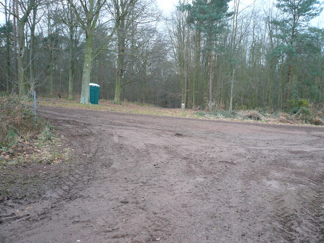 Sherwood Forest - Track Junction