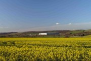 The still vacant Prologis shed sticks out of the Dearne Valley on a warm Spring evening