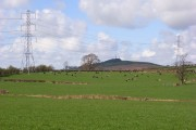 Pasture and pylons, High Hesket