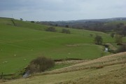 Pasture, Midgeholme
